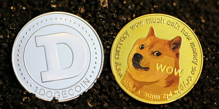 8 Dog-Inspired Cryptos That Aren't Dogecoin